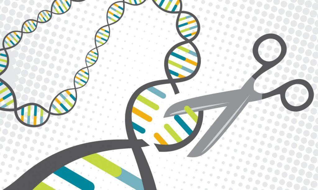 Best of CRISPR 2017