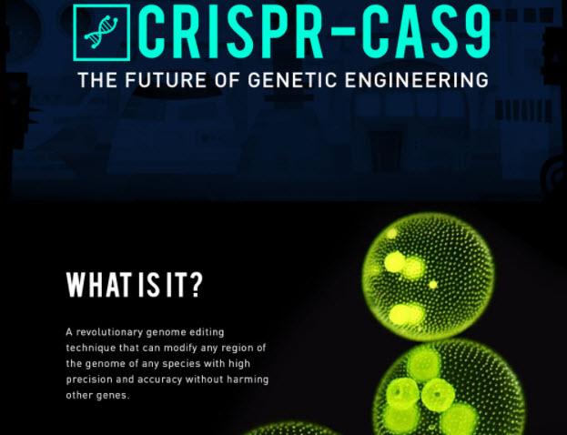 CRISPR-CAS9: 101 Overview